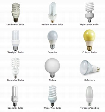 Image result for Types of bulb to use